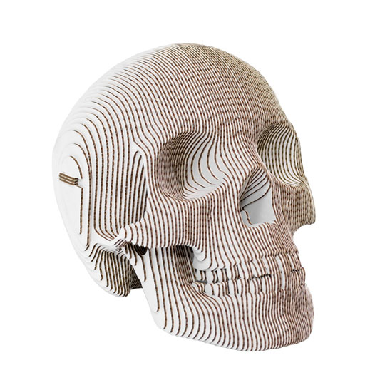 cardboard safari: vince the skull