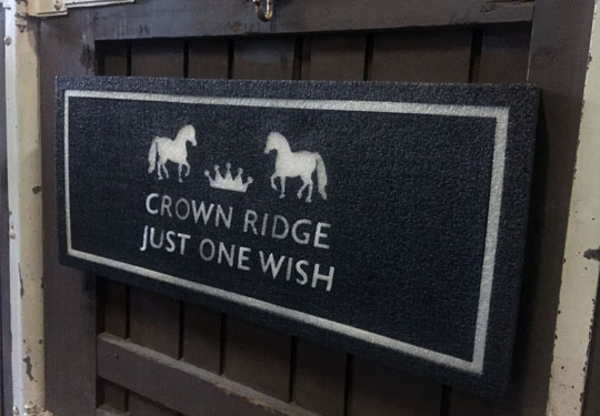 Crown Ridge Farms: Just One Wish Stall