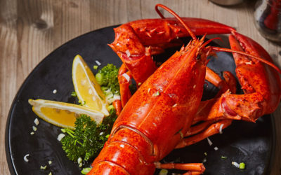 5 Snappy Tips for How to Ship Lobster