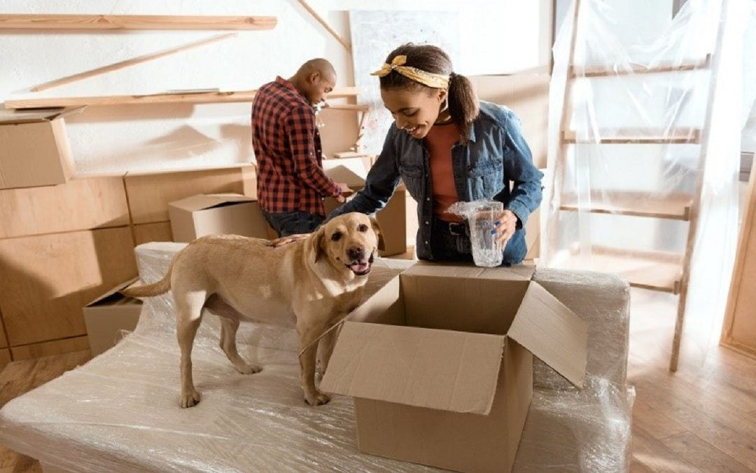 5 Essential Supplies for a Stress-Free Move