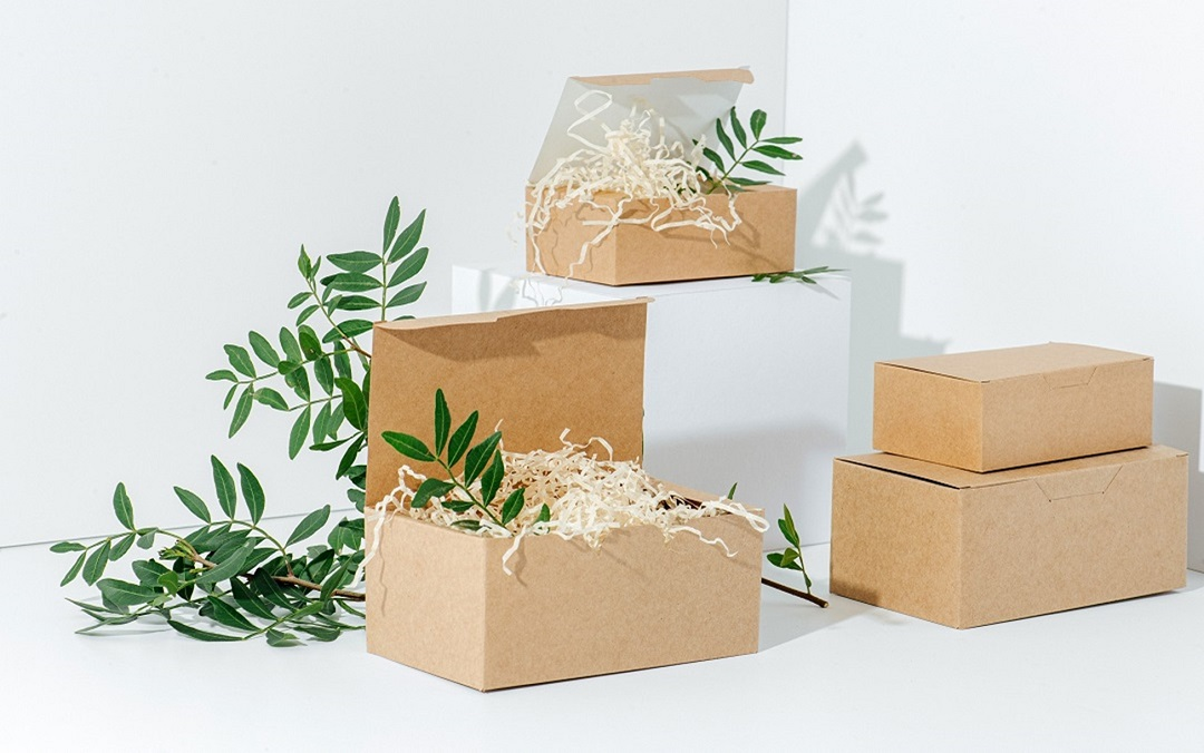 From Beginning to End: Biodegradable Packaging Options
