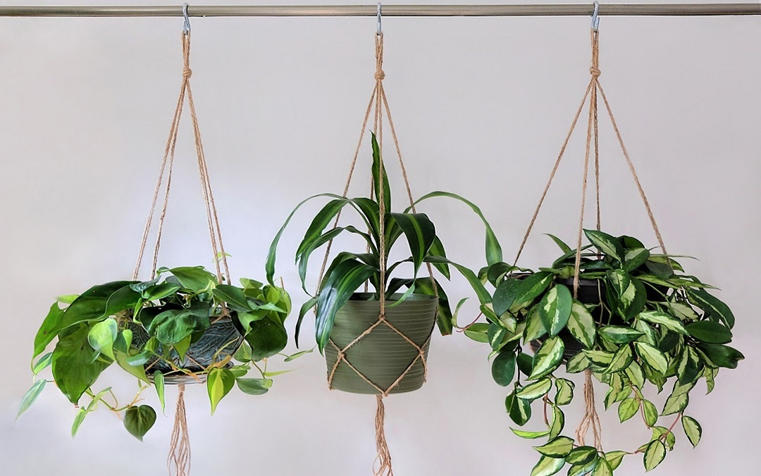5 Remarkable Ways to Use Jute Twine