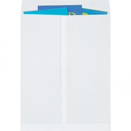 """Jumbo Envelopes, White, 17 x 22"""""""