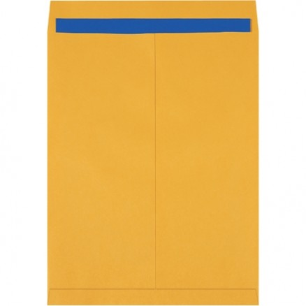 """Jumbo Envelopes, Kraft, 17 x 22"""""""