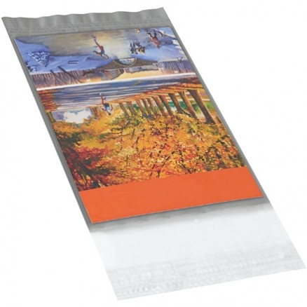 Poly Mailers, Clear View, 5 x 7""