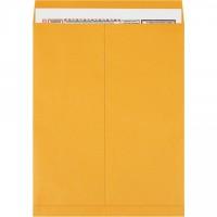 """Jumbo Envelopes, Kraft, 18 x 23"""""""