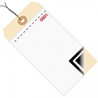 Pre-Wired Inventory Tags - 3-Part Carbon Style with Adhesive Strip (0000-0499), 6 1/4 x 3 1/8""