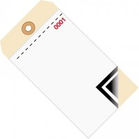 Inventory Tags - 3-Part Carbon Style with Adhesive Strip (0000-0499), 6 1/4 x 3 1/8""
