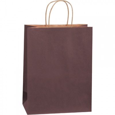 Brown Tinted Paper Shopping Bags, Debbie - 10 x 5 x 13