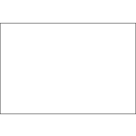 """4 x 6"""" White Block Out Labels"""
