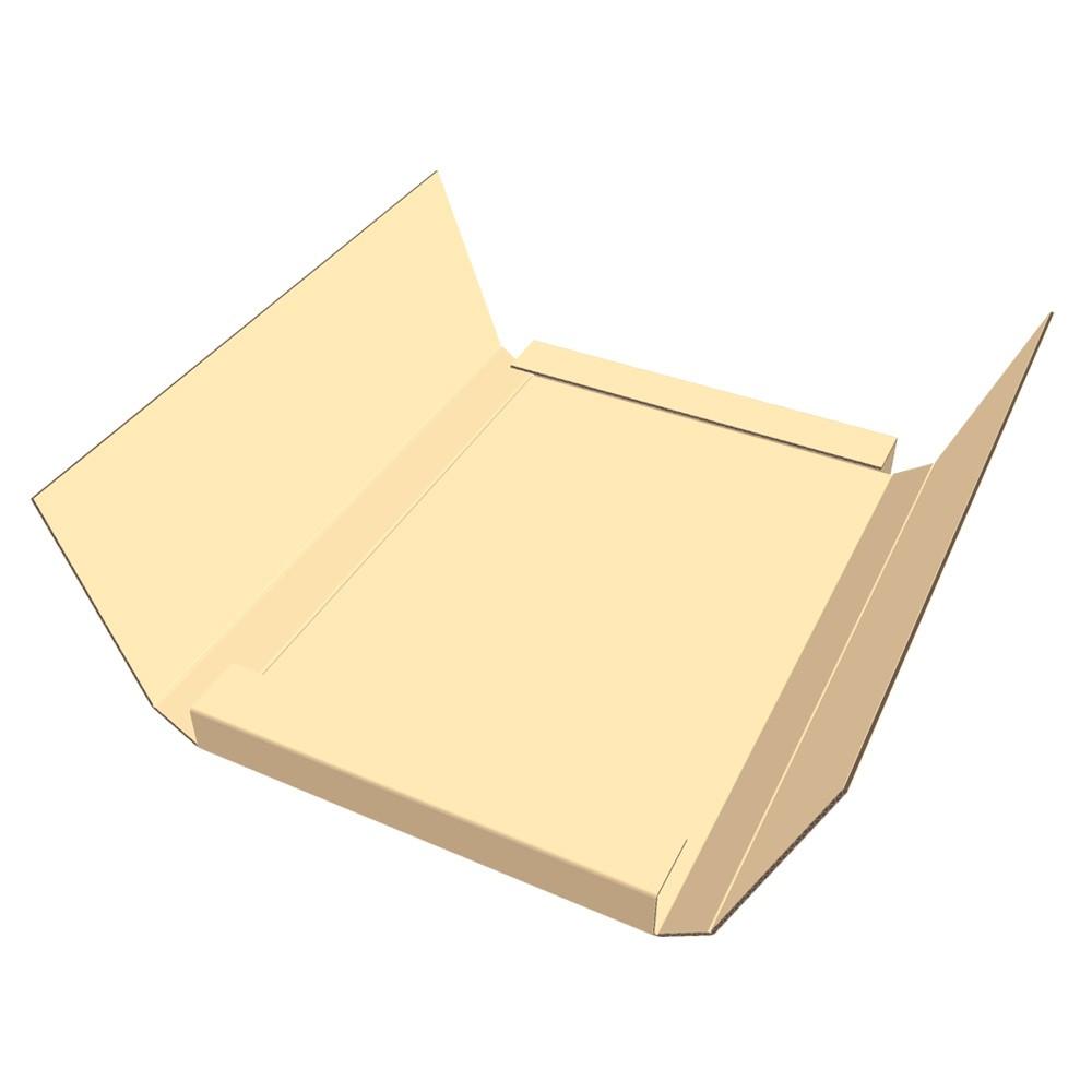 Custom Easy Fold Mailer
