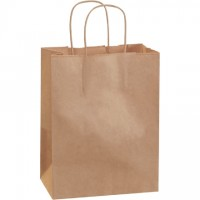 Kraft Paper Shopping Bags, Cub - 8 x 4 1/2 x 10 1/4""