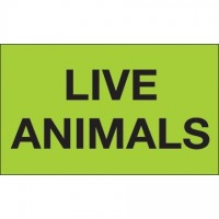 """ Live Animals"" Green Labels, 3 x 5"""