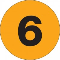 "Fluorescent Orange Circle ""6"" Number Labels - 3"""
