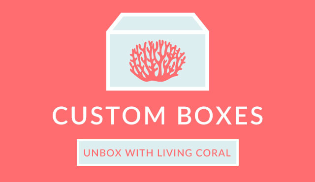 Pantone Color 2019 - Living Coral - Boxes